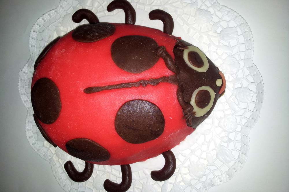 Marienkafer Torte